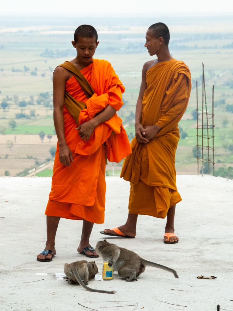 Two monks and two monkeys