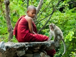 A monkey and a young monk resting