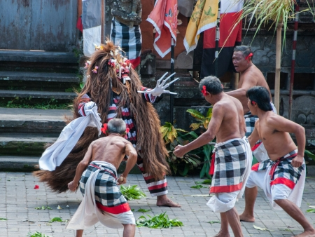 Followers of the Barong helping to fight the Rangda