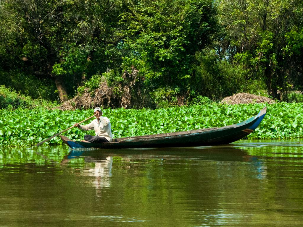 Lush vegetation along Stoeng Sangke river