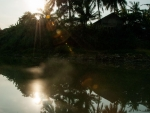 Reflection of palm trees on Sangker River