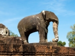 Elephants around the terraces of East Mebon