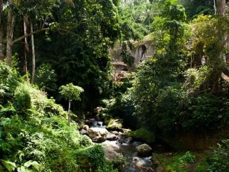 Pakerisan river flowing through lush jungle