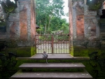 monkey-forest-ubud-bali-indonesia-k-the-temple-inside-the-monkey-forest