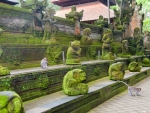 monkey-forest-ubud-bali-indonesia-m-moss-covered-monkey-statues-on-the-steps-of-the-temple