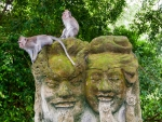 monkey-forest-ubud-bali-indonesia-q-two-monkeys-sitting-on-two-heads