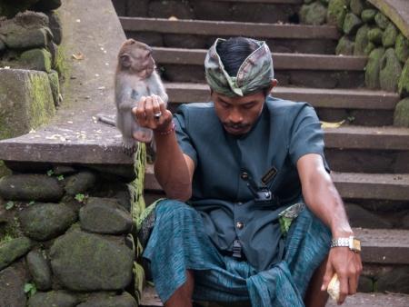 One of the monkey handlers feeding a monkey
