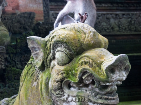 Monkey sitting on a boar statue