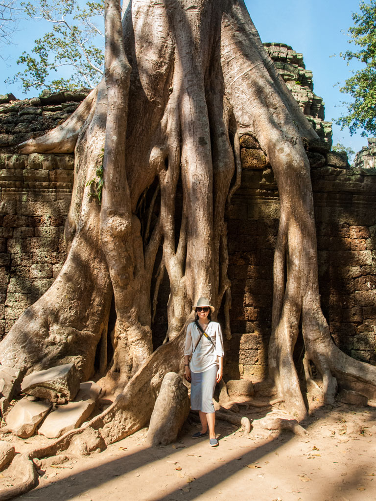 Sonya standing next to the roots of a large tree
