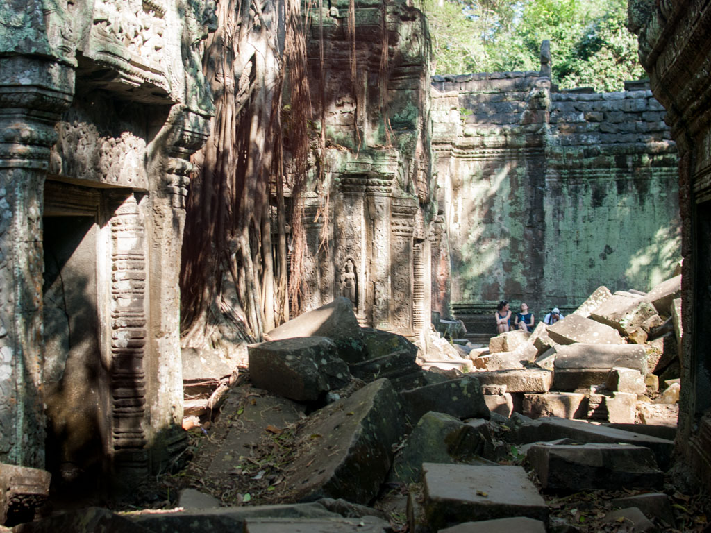 Roots of the strangler fig draped over the temple