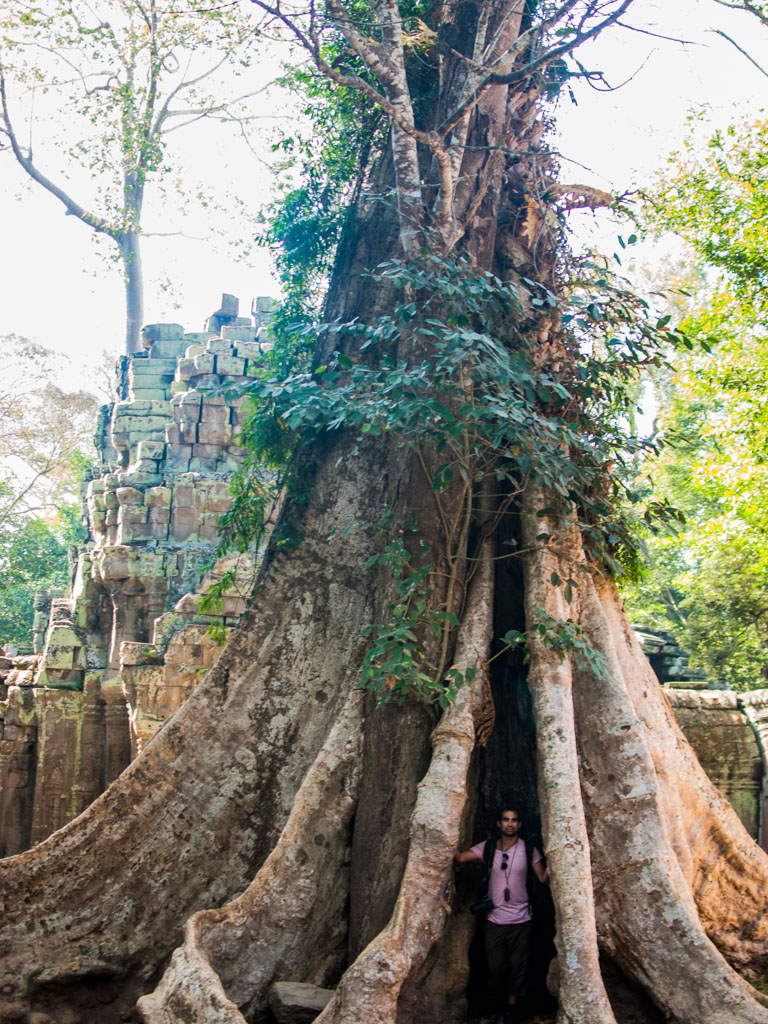 Travis standing in the roots of a Silk-cotton tree