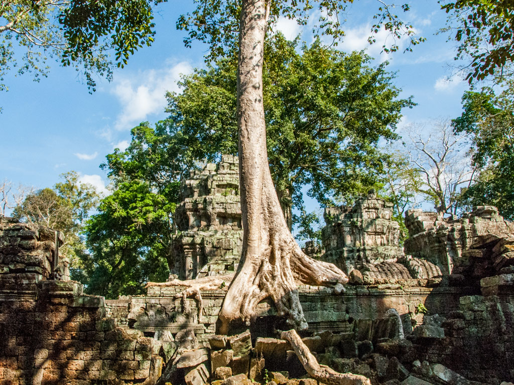 The remains of the Ta Prohm temple