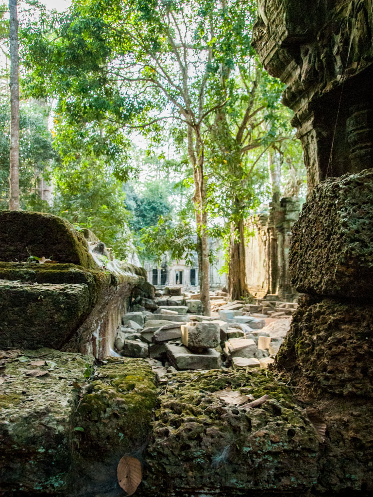Looking from the East over the wall towards Ta Prohm