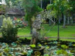 ubud-city-bali-indonesia-museum-puri-lukisan-n-ponds-with-lotus-in-the-gardens-of-the-ubud-museum