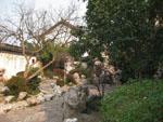 Nice looking garden