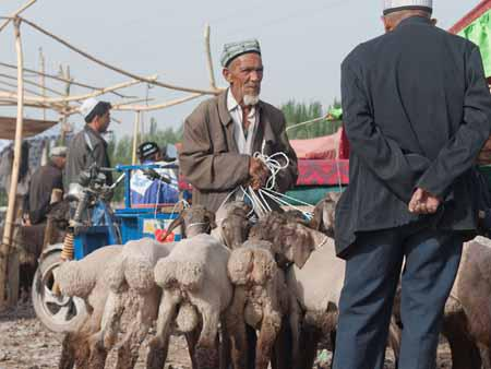 A Uighur men and his goats