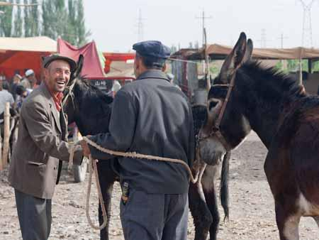 Two men with donkeys chatting