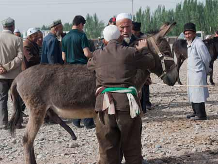 Two men bartering over a donkey