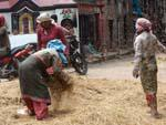 Women threshing grains in the alleys near Durbar Square