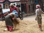 Women threshing grains in the alleys near Durbar Square