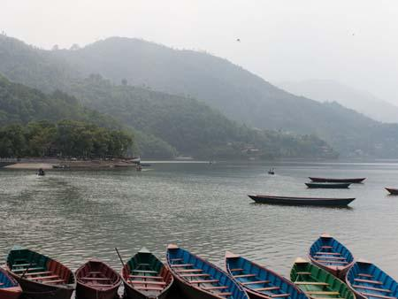 Canoes moored at Lake Phewa Tal