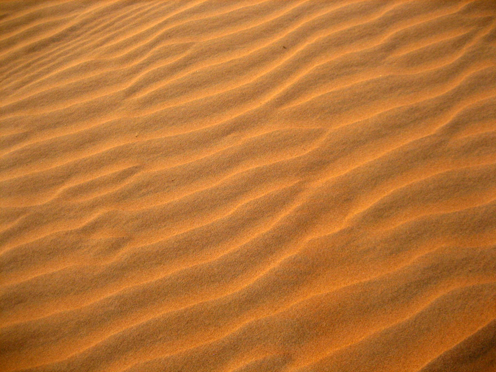 Wahiba Sands - a sandy desert in Oman - Sonya and Travis