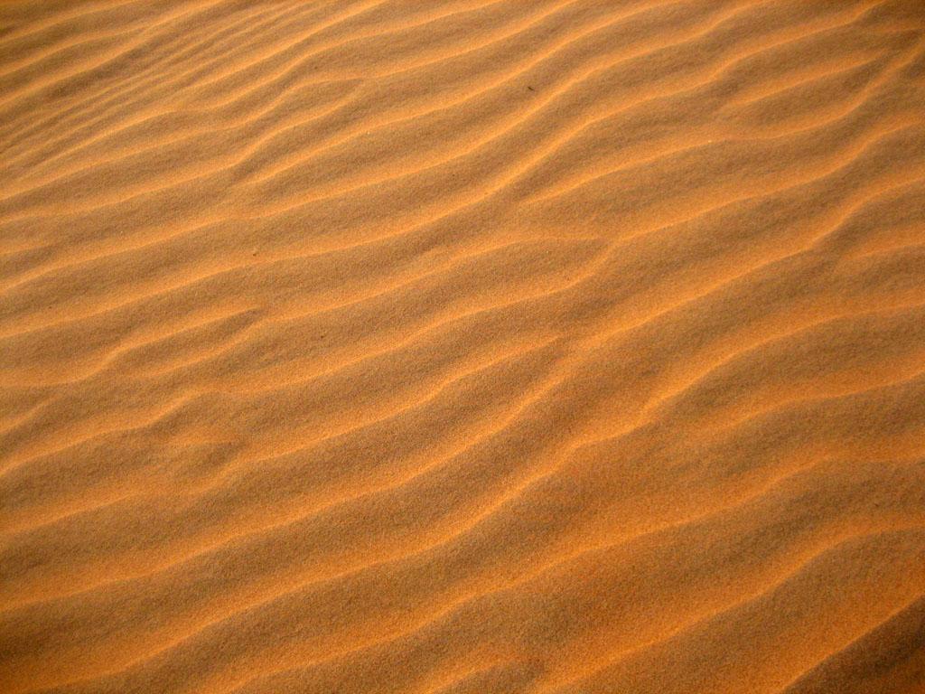 Wahiba Sands - a sandy...