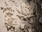 'fragile' - Dehua porcelain flowers, with exploded gunpowder calligraphy