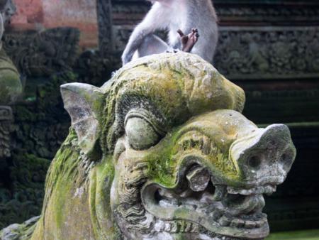 Monkey sitting on a boar statue
